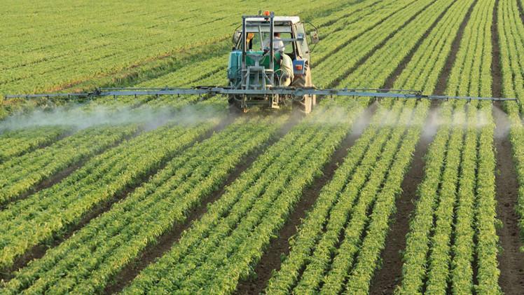 Monsanto da�a el ADN