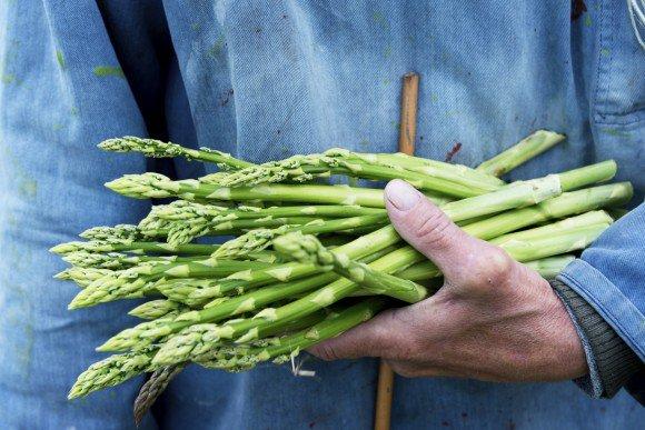 Qu� alimentos son los m�s y los menos contaminados con pesticidas
