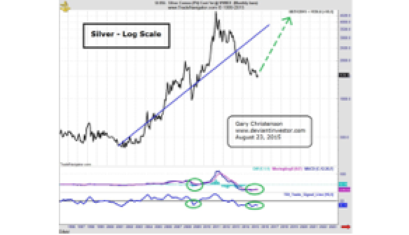 Silver and Warnings From Exponential Markets