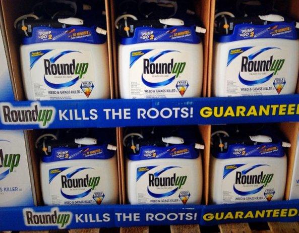 Descubren v�nculos entre los herbicidas de Monsanto y el c�ncer cerebral infantil