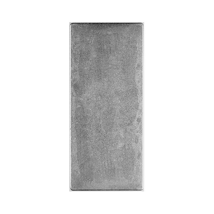 goldsilver.com - Royal Canadian Mint Silver Bar, 100 oz Back
