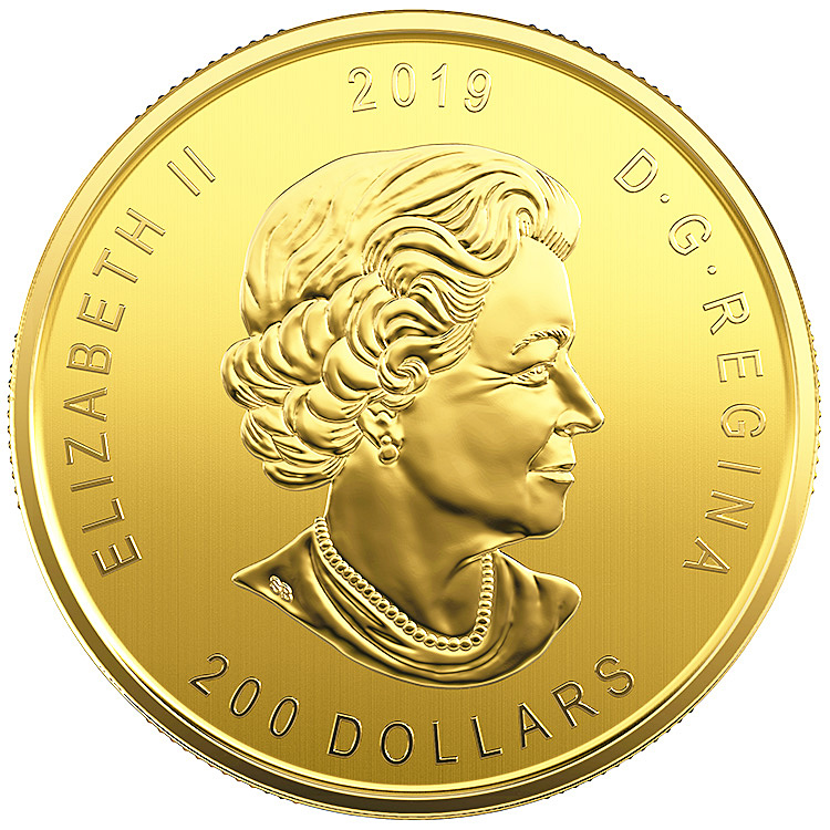 1 oz Canadian Gold Moose Coin with Assay (2019) - Buy
