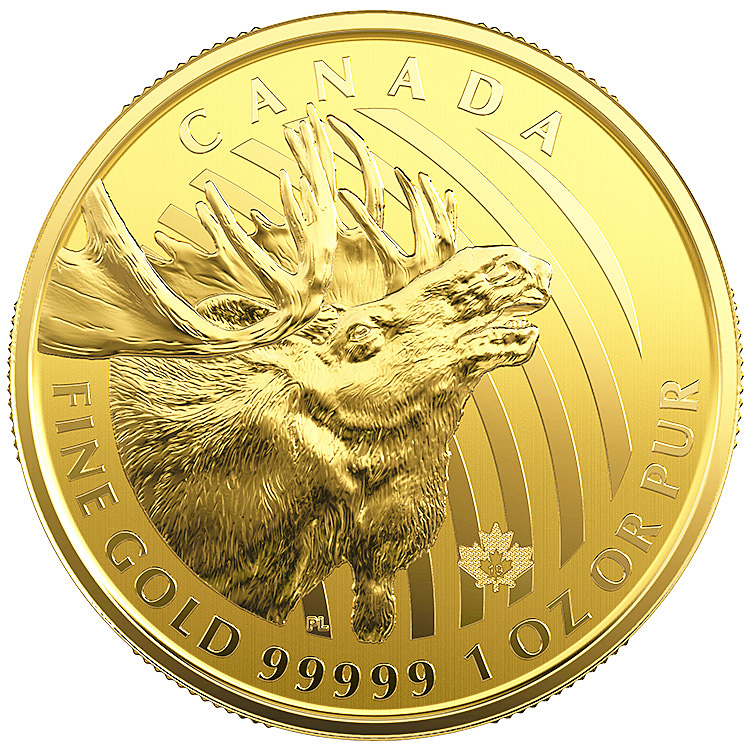 1 Oz Canadian Gold Moose Coin With Assay 2019 Buy