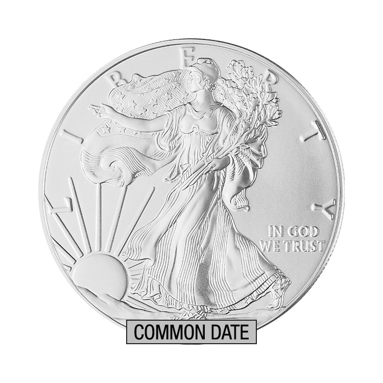 goldsilver.com - 1 oz American Silver Eagle Coin (Common Date) Front