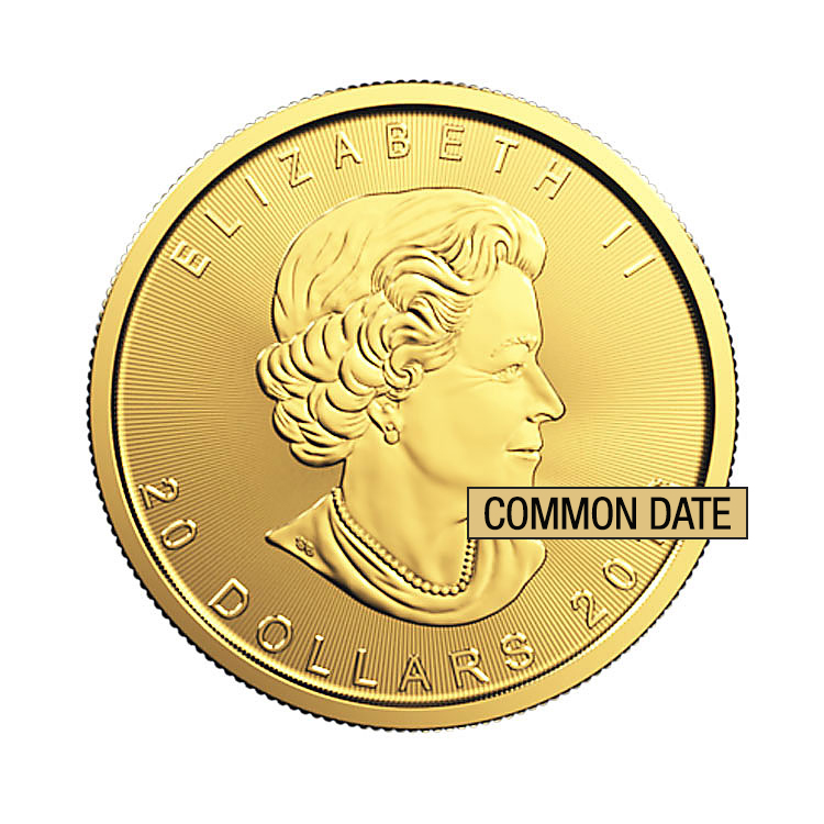 goldsilver.com - 1/2 oz Canadian Gold Maple Leaf Coin (Common Date) Front