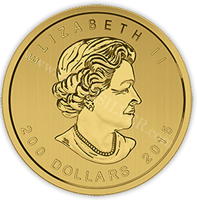 2015 1 Oz Growling Cougar Pure Gold Coin For Sale At