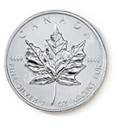 goldsilver.com - Canadian Maple Leaf Silver 500 oz Case Back