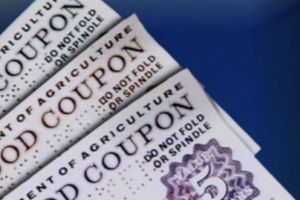 unprecedented - food stamp enrollments top 45 million 3 years in a row