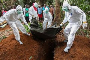 world bank warns of 'economic imperative' to respond rapidly to ebola