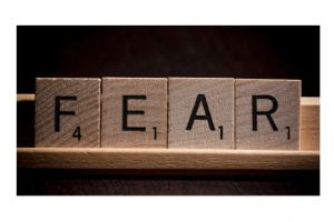 the return of the �fear trade�