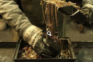 kazakhstan�s central bank buying out all gold produced