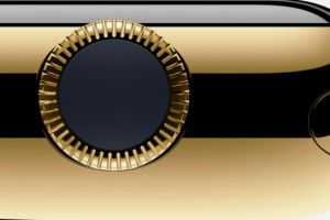gold apple watch could cost $10,000.00