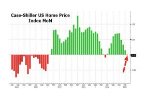case-shiller us home price index drops most in a year