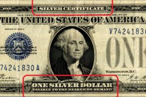 gold and silver money has devolved into debt and plastic