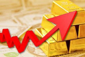 gold prices will rise because �